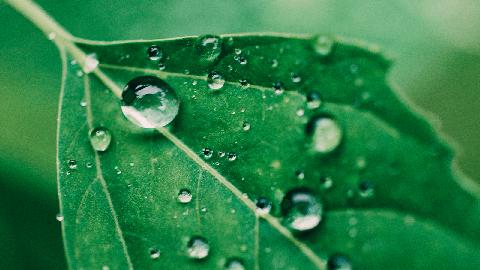 Tratare water reppelent hidrofibizare pentru materiale textile in rola |  PRINTCENTER - Tipar digital, offset, indoor, outdoor